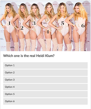 Heidi Klum Quiz from InStyle